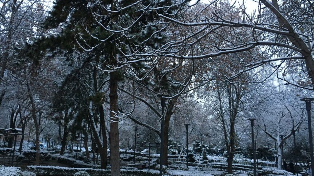 ankarada kar yagisi 17 mart